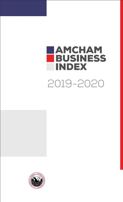 AmCham Business Index 2019-2020